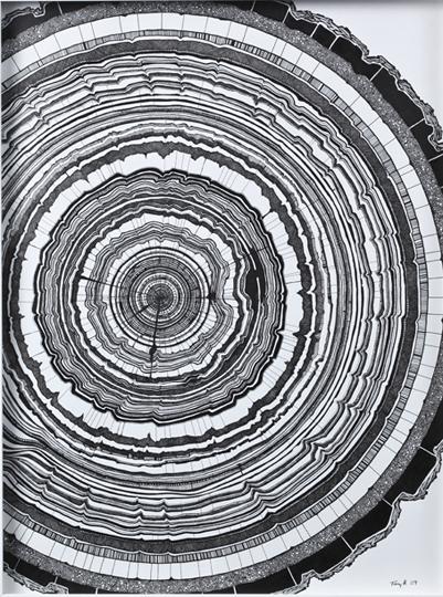 TH – Tree Rings